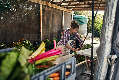 Buy stock photo Shot of a young woman rinsing off freshly picked vegetables on a farm