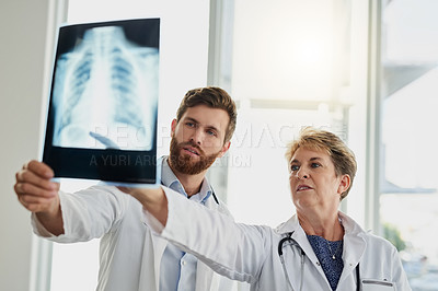 Buy stock photo Cropped shot of a doctor working in the hospital