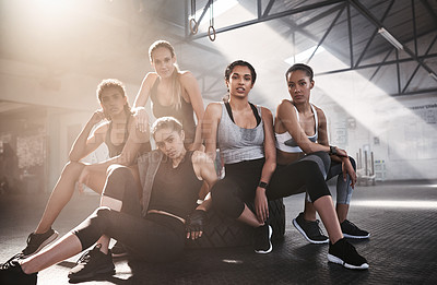 Buy stock photo Portrait of a group of fit young women working out together at the gym