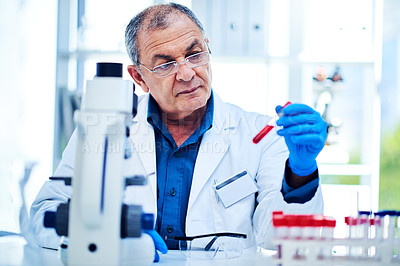 Buy stock photo Shot of a mature scientist analyzing samples in a laboratory