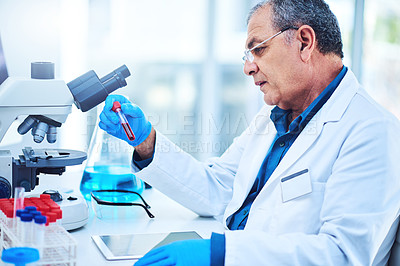 Buy stock photo Shot of a mature scientist using a digital tablet while analyzing samples in a lab