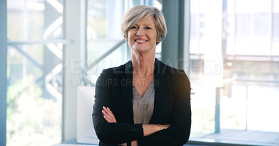 Buy stock photo Portrait of a mature businesswoman standing in an office