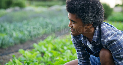 Buy stock photo Cropped shot of a handsome young male farmer checking on his crops on the farm