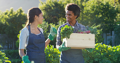 Buy stock photo Cropped shot of an affectionate young couple holding a crate of vegetable while working on their farm