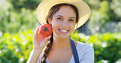 Buy stock photo Cropped portrait of an attractive young female farmer holding a tomato while standing on her farm
