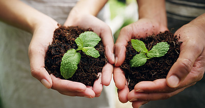 Buy stock photo High angle shot of an unrecognizable couple holding budding plants in soil while working on their farm