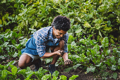 Buy stock photo Shot of a young man holding soil in his hands in a garden
