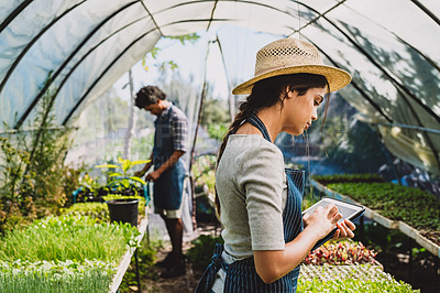 Buy stock photo Shot of a young woman using a digital tablet in a greenhouse with her partner in the background