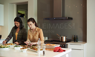 Buy stock photo Shot of two young women cooking a Christmas meal at home