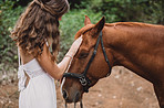 Love your horse and he'll love you forever