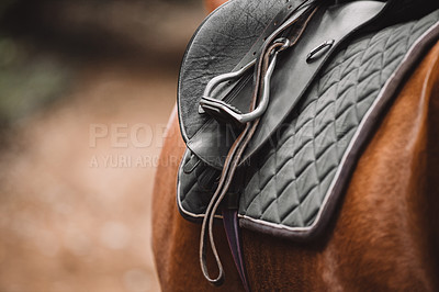 Buy stock photo Cropped shot of a saddle on a horse's back