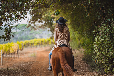 Buy stock photo Rearview shot of a young woman riding a horse on a farm