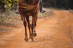 These hooves were made for trotting