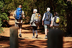 Hiking is one of the most beneficial activities for seniors