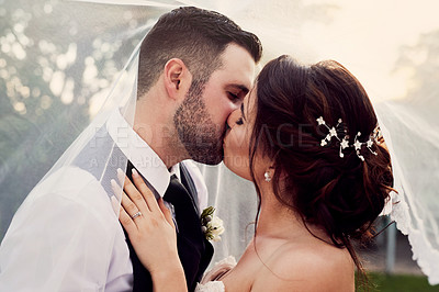 Buy stock photo Shot of a young couple kissing under a veil on their wedding day