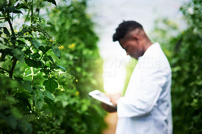 Buy stock photo Defocused shot of a young botanist using a digital tablet while studying plants outdoors