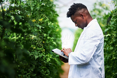 Buy stock photo Shot of a handsome young botanist using a digital tablet while working outdoors in nature