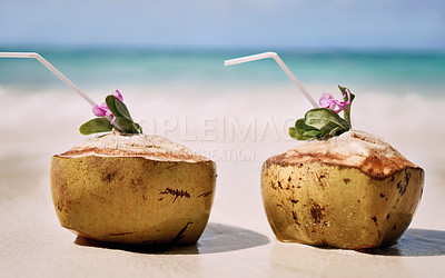 Buy stock photo Still life shot of two coconuts placed alongside each other on a beach in Raja Ampat, Indonesia