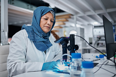 Buy stock photo Cropped shot of an attractive mature female scientist working with a computer and a digital microscope in a laboratory