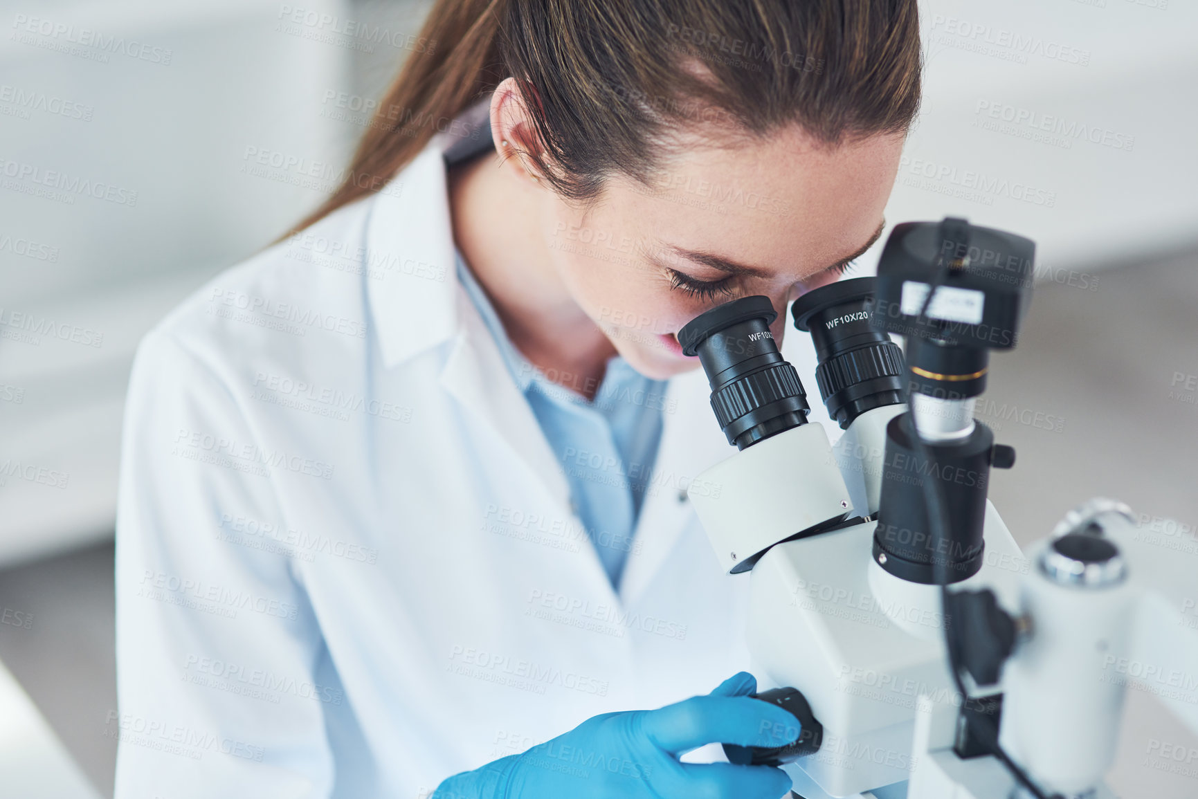 Buy stock photo Cropped shot of a focused young female scientist looking through a microscope while doing tests inside of a laboratory