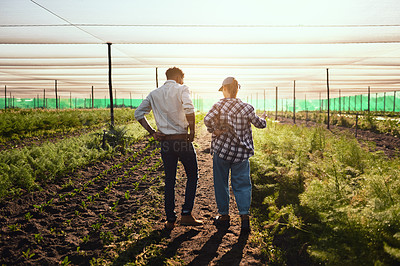 Buy stock photo Rearview shot of two young farmers working inside of a greenhouse on their farm
