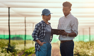 Buy stock photo Cropped shot of two young farmers looking at a tablet while working on their farm