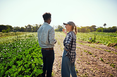 Buy stock photo Rearview shot of two young farmers working on their farm