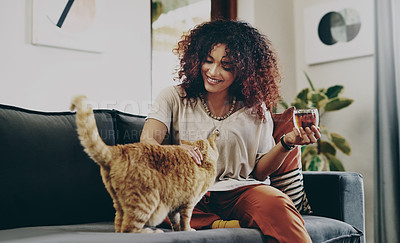 Buy stock photo Shot of an attractive young woman drinking tea while relaxing with her cat at home