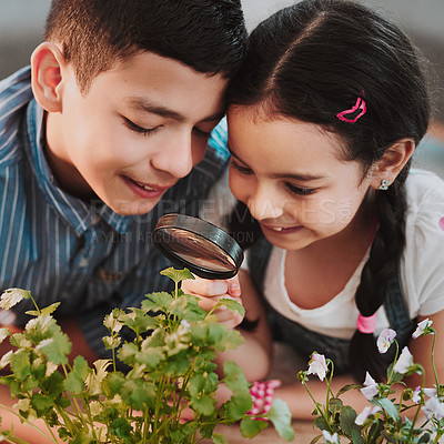 Buy stock photo Cropped shot of two adorable young siblings looking through a magnifying glass while experimenting with plants at home