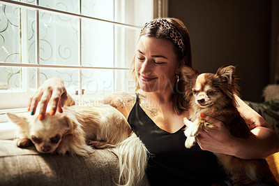 Buy stock photo Shot of a young woman relaxing with her dogs on the sofa at home