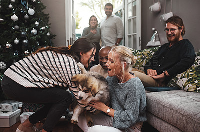 Buy stock photo Cropped shot of a group of cheerful friends hanging out together with a puppy in the living room at home during christmas time