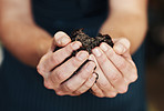 Rich soil perfect for growing healthy plants