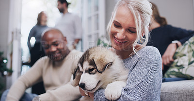 Buy stock photo Shot of young woman cuddling her adorable husky puppy during a Christmas party at home