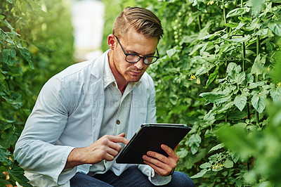 Buy stock photo Shot of a handsome young scientist using a digital tablet while studying plants and crops outdoors on a farm