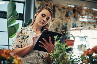 Buy stock photo Cropped shot of an attractive young businesswoman standing alone in her flower shop and using a tablet