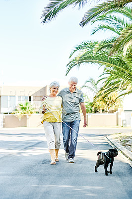 Buy stock photo Shot of a happy senior couple going for a leisurely walk in the neighbourhood with their dog