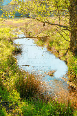 Buy stock photo A photo of a small creek and lake