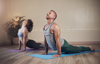 Buy stock photo Full length shot of two young yogis holding an upward facing dog pose during an indoor yoga session