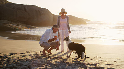 Buy stock photo Full length shot of an affectionate senior couple playing with their dog at the beach