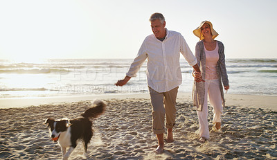 Buy stock photo Full length shot of an affectionate senior couple spending time with their dog at the beach