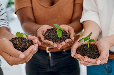 Buy stock photo Cropped shot of an unrecognizable group of businesswomen holding a plant growing out of soil inside an office