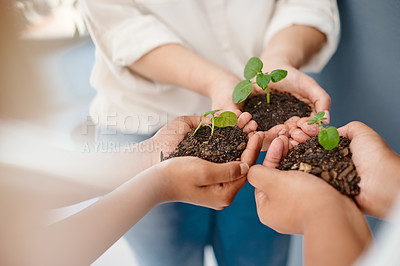 Buy stock photo Cropped shot of an unrecognizable group of businesswomen holding plants growing out of soil inside an office