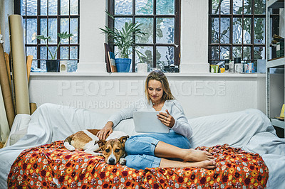 Buy stock photo Shot of a young woman using a digital tablet while relaxing with her dog on a sofa at home