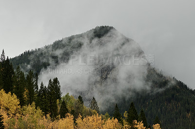 Buy stock photo Shot of beautiful mountain and forest scenery covered in clouds in the East Kootenay region of British Columbia, Canada