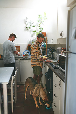 Buy stock photo Cropped shot of two young men making food together in the kitchen at home with their dog during the day