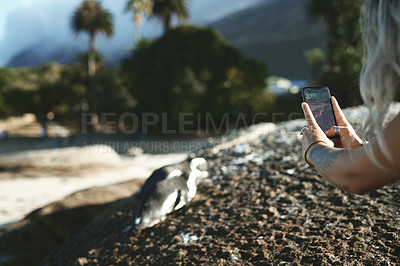 Buy stock photo Cropped shot of an unrecognizable woman using her cellphone to take a picture during a day outdoors