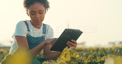 Buy stock photo Cropped shot of an attractive young female farmer using a digital tablet while working in a crop field