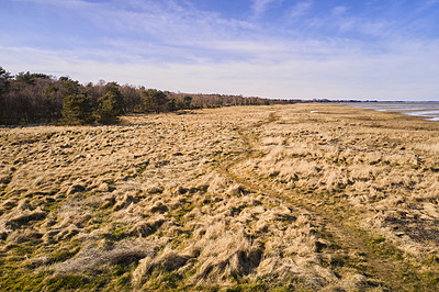 Buy stock photo Winter is leaving, springtime is coming  - nature photos from the Eastcost (Kattegat), Jutland, Close to Mariager fjord, Denmark