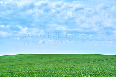 Buy stock photo Background and copy space - farmland