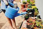 The best way to avoid wilting plants